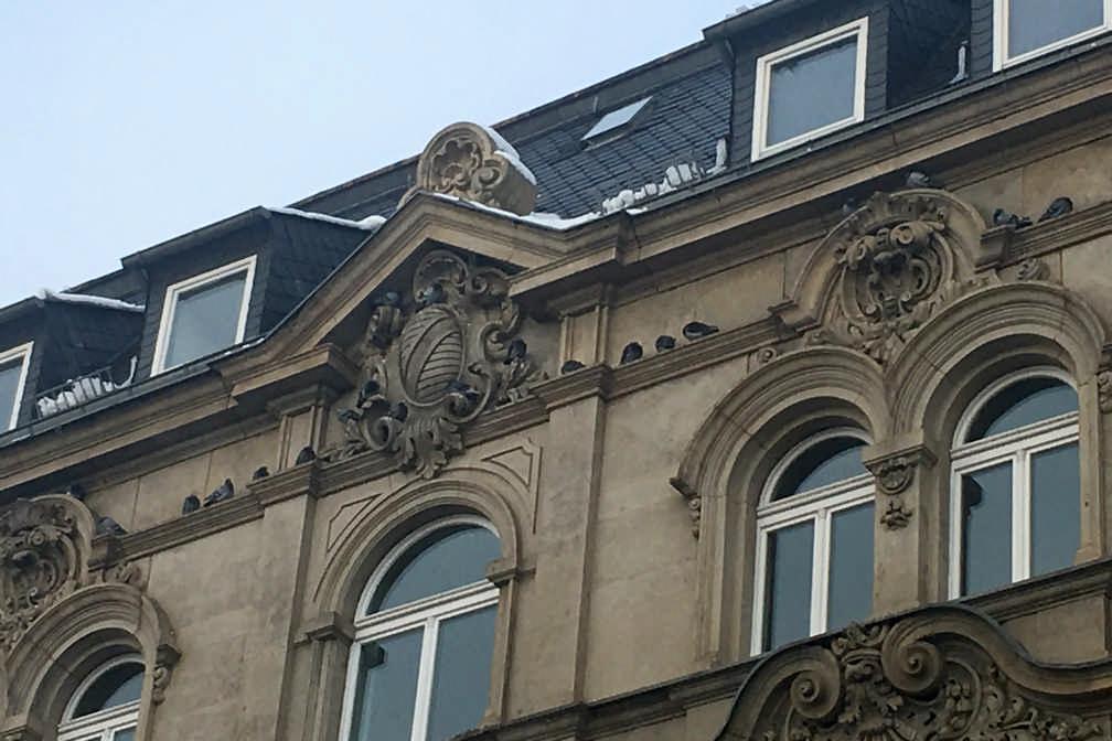 Privatgutachten Sachverstaendiger Schaedlingsbekämpfung Zwickau
